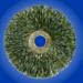 15543 Wire Wheel 3in. - Fine - Qty 1